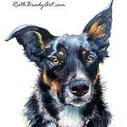 Scout, A Border Collie, Pen and ink