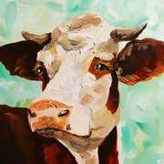 Simmental Cattle