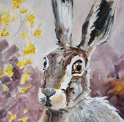 Aramanthine Hare