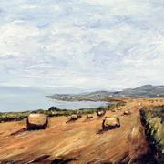 Hay Bales at Greystones