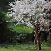 First Spring Blossom