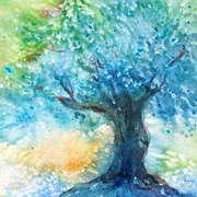 Sunlit Olive Tree
